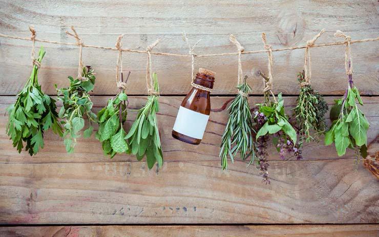 hierbas magicas como se utilizan - Hierbas mágicas, cuáles son y cómo se utilizan