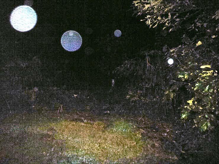 orbes entidades mas alla universo - Orbes, entidades más allá del universo