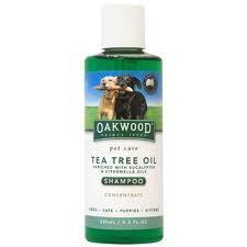Champu de arbol de te para perros e1346807537960 Propiedades y beneficios del aceite del árbol de té
