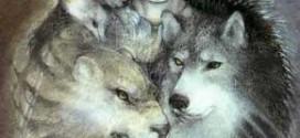 Sabes cual es tu totem animal 272x125 - ¿Sabes cuál es tu tótem animal?
