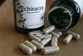 Equinacea 290x195 - Fortalece tu sistema inmunológico con la Equinácea