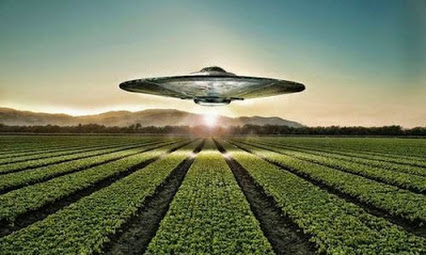 Círculos cosechas evidencia extraterrestre