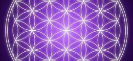 flor de la vida solidos platonicos 272x125 - La Flor de la Vida y los sólidos platónicos