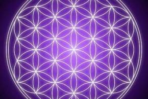 La Flor de la Vida y los sólidos platónicos