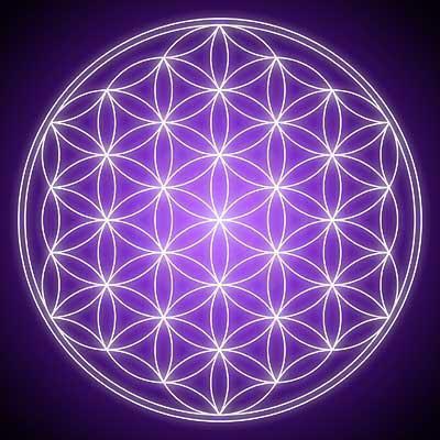 flor de la vida solidos platonicos - La Flor de la Vida y los sólidos platónicos