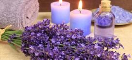significado espiritual lavanda 272x125 - El significado espiritual de la lavanda