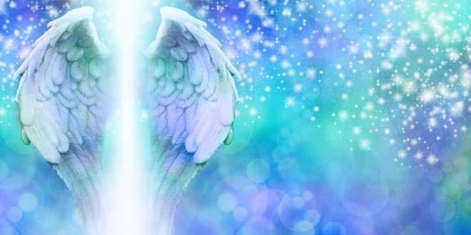 mensaje tu angel - Descubre que mensaje tiene tu ángel para ti