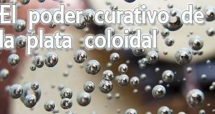 propiedades plata coloidal 310x165 - Descubre las propiedades de la plata coloidal