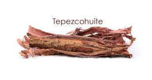 Tepezcohuite piel vegetal mayas