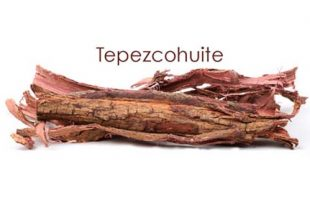 "tepezcohuite piel vegetal mayas 310x205 - Tepezcohuite, también llamado ""la piel vegetal de los mayas"""