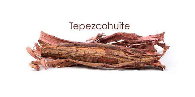 """tepezcohuite piel vegetal mayas - Tepezcohuite, también llamado """"la piel vegetal de los mayas"""""""