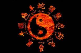 horoscopo chino 310x205 - Horóscopo Chino 2018: las predicciones para cada signo