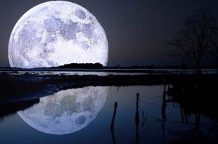 rituales fase lunar 310x205 - Qué tipo de rituales son los más indicados en cada fase lunar