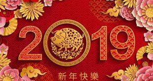 ano del cerdo tierra 310x165 - 2019: El Año del Cerdo de la Tierra, el fin de un ciclo completo