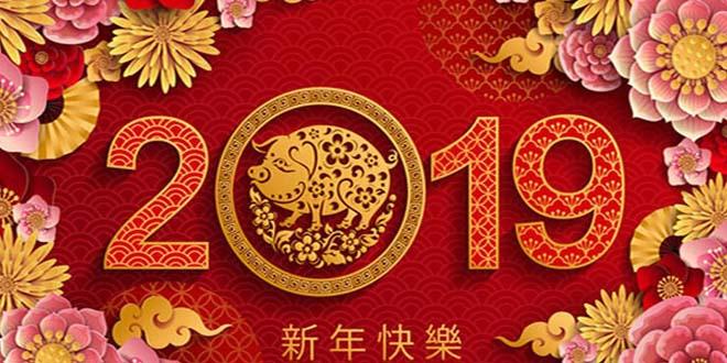 ano del cerdo tierra - 2019: El Año del Cerdo de la Tierra, el fin de un ciclo completo