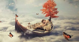 mensajes suenos 310x165 - Conoce los mensajes que transmiten tus sueños