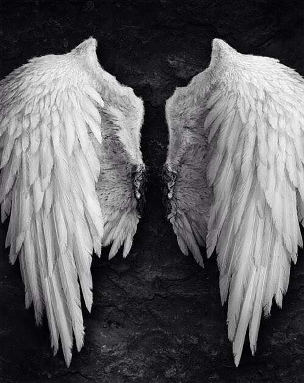 angel en tierra - 6 señales de que eres un ángel en la Tierra